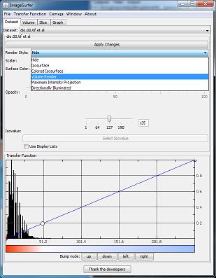 Enabling volume rendering in ImageSurfer