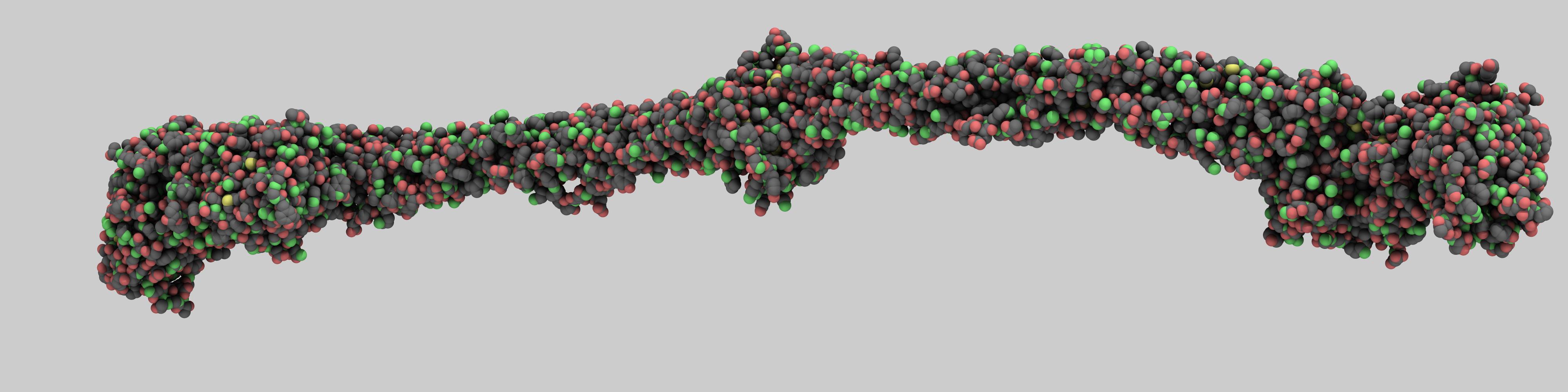 iMiJ.pdb: Native Chicken Fibrinogen rendered using broad illumination on the BASS (NIH 1S10RR023069-01)