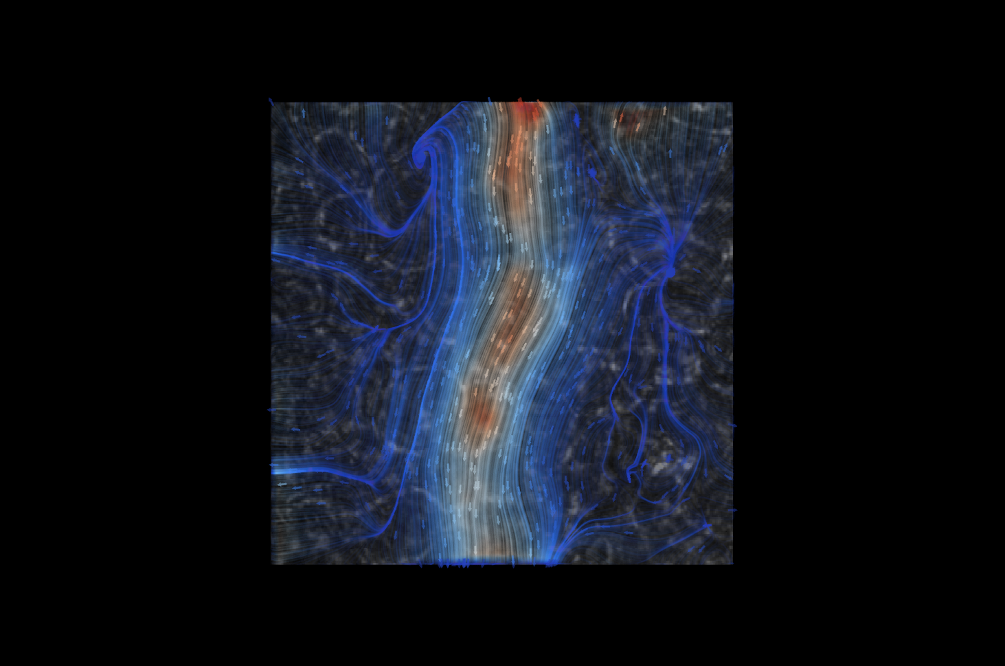 Cilia-driven mucus flow visualization by David Borland